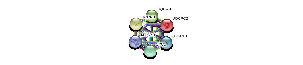 http://string-db.org/version_10/api/image/networkList?limit=0&targetmode=proteins&caller_identity=gene_cards&network_flavor=evidence&identifiers=9606.ENSP00000332887%0d%0a9606.ENSP00000317159%0d%0a9606.ENSP00000309565%0d%0a9606.ENSP00000354554%0d%0a9606.ENSP00000287022%0d%0a9606.ENSP00000268379%0d%0a
