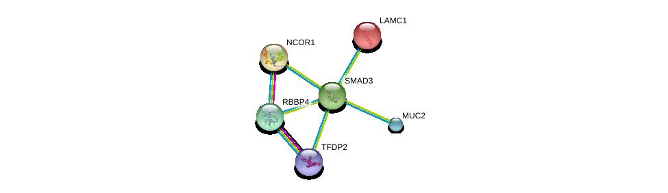 http://string-db.org/version_10/api/image/networkList?limit=0&targetmode=proteins&caller_identity=gene_cards&network_flavor=evidence&identifiers=9606.ENSP00000332973%0d%0a9606.ENSP00000415183%0d%0a9606.ENSP00000268712%0d%0a9606.ENSP00000420616%0d%0a9606.ENSP00000362592%0d%0a9606.ENSP00000258341%0d%0a