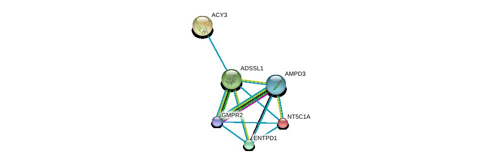 http://string-db.org/version_10/api/image/networkList?limit=0&targetmode=proteins&caller_identity=gene_cards&network_flavor=evidence&identifiers=9606.ENSP00000333019%0d%0a9606.ENSP00000255082%0d%0a9606.ENSP00000392859%0d%0a9606.ENSP00000379802%0d%0a9606.ENSP00000360250%0d%0a9606.ENSP00000235628%0d%0a