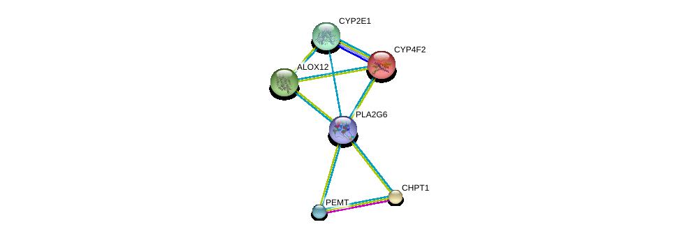 http://string-db.org/version_10/api/image/networkList?limit=0&targetmode=proteins&caller_identity=gene_cards&network_flavor=evidence&identifiers=9606.ENSP00000333142%0d%0a9606.ENSP00000229266%0d%0a9606.ENSP00000251535%0d%0a9606.ENSP00000252945%0d%0a9606.ENSP00000255389%0d%0a9606.ENSP00000221700%0d%0a