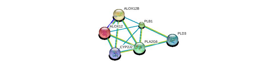 http://string-db.org/version_10/api/image/networkList?limit=0&targetmode=proteins&caller_identity=gene_cards&network_flavor=evidence&identifiers=9606.ENSP00000333142%0d%0a9606.ENSP00000315167%0d%0a9606.ENSP00000330442%0d%0a9606.ENSP00000251535%0d%0a9606.ENSP00000360247%0d%0a9606.ENSP00000348901%0d%0a