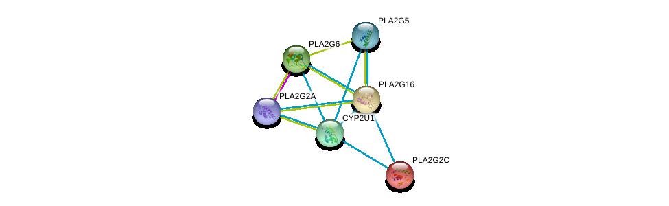 http://string-db.org/version_10/api/image/networkList?limit=0&targetmode=proteins&caller_identity=gene_cards&network_flavor=evidence&identifiers=9606.ENSP00000333212%0d%0a9606.ENSP00000333142%0d%0a9606.ENSP00000320337%0d%0a9606.ENSP00000364249%0d%0a9606.ENSP00000364252%0d%0a9606.ENSP00000247992%0d%0a