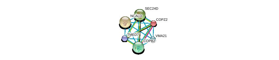 http://string-db.org/version_10/api/image/networkList?limit=0&targetmode=proteins&caller_identity=gene_cards&network_flavor=evidence&identifiers=9606.ENSP00000333255%0d%0a9606.ENSP00000220931%0d%0a9606.ENSP00000329419%0d%0a9606.ENSP00000006101%0d%0a9606.ENSP00000280551%0d%0a9606.ENSP00000405926%0d%0a