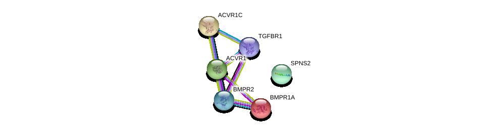 http://string-db.org/version_10/api/image/networkList?limit=0&targetmode=proteins&caller_identity=gene_cards&network_flavor=evidence&identifiers=9606.ENSP00000333292%0d%0a9606.ENSP00000363708%0d%0a9606.ENSP00000364133%0d%0a9606.ENSP00000243349%0d%0a9606.ENSP00000263640%0d%0a9606.ENSP00000224764%0d%0a