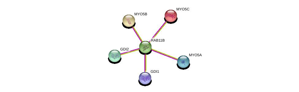http://string-db.org/version_10/api/image/networkList?limit=0&targetmode=proteins&caller_identity=gene_cards&network_flavor=evidence&identifiers=9606.ENSP00000333547%0d%0a9606.ENSP00000394071%0d%0a9606.ENSP00000369538%0d%0a9606.ENSP00000285039%0d%0a9606.ENSP00000382177%0d%0a9606.ENSP00000261839%0d%0a