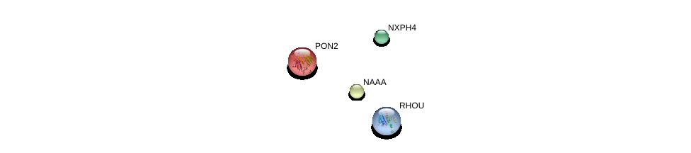 http://string-db.org/version_10/api/image/networkList?limit=0&targetmode=proteins&caller_identity=gene_cards&network_flavor=evidence&identifiers=9606.ENSP00000333593%0d%0a9606.ENSP00000222572%0d%0a9606.ENSP00000286733%0d%0a9606.ENSP00000355652%0d%0a