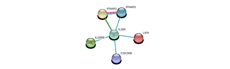 http://string-db.org/version_10/api/image/networkList?limit=0&targetmode=proteins&caller_identity=gene_cards&network_flavor=evidence&identifiers=9606.ENSP00000333639%0d%0a9606.ENSP00000384053%0d%0a9606.ENSP00000328133%0d%0a9606.ENSP00000343957%0d%0a9606.ENSP00000270139%0d%0a9606.ENSP00000263409%0d%0a