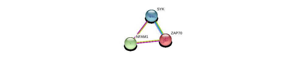 http://string-db.org/version_10/api/image/networkList?limit=0&targetmode=proteins&caller_identity=gene_cards&network_flavor=evidence&identifiers=9606.ENSP00000333680%0d%0a9606.ENSP00000364898%0d%0a9606.ENSP00000264972%0d%0a