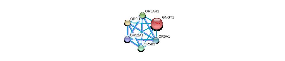 http://string-db.org/version_10/api/image/networkList?limit=0&targetmode=proteins&caller_identity=gene_cards&network_flavor=evidence&identifiers=9606.ENSP00000333684%0d%0a9606.ENSP00000248572%0d%0a9606.ENSP00000302606%0d%0a9606.ENSP00000302639%0d%0a9606.ENSP00000303076%0d%0a9606.ENSP00000303096%0d%0a
