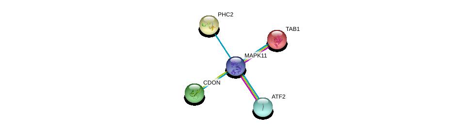 http://string-db.org/version_10/api/image/networkList?limit=0&targetmode=proteins&caller_identity=gene_cards&network_flavor=evidence&identifiers=9606.ENSP00000333685%0d%0a9606.ENSP00000264110%0d%0a9606.ENSP00000216160%0d%0a9606.ENSP00000257118%0d%0a9606.ENSP00000257118%0d%0a9606.ENSP00000263577%0d%0a