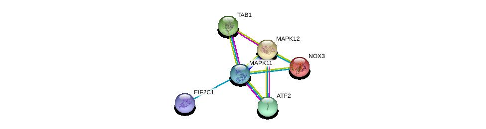 http://string-db.org/version_10/api/image/networkList?limit=0&targetmode=proteins&caller_identity=gene_cards&network_flavor=evidence&identifiers=9606.ENSP00000333685%0d%0a9606.ENSP00000264110%0d%0a9606.ENSP00000216160%0d%0a9606.ENSP00000362300%0d%0a9606.ENSP00000159060%0d%0a9606.ENSP00000215659%0d%0a