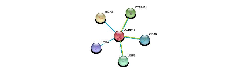 http://string-db.org/version_10/api/image/networkList?limit=0&targetmode=proteins&caller_identity=gene_cards&network_flavor=evidence&identifiers=9606.ENSP00000333685%0d%0a9606.ENSP00000369293%0d%0a9606.ENSP00000344456%0d%0a9606.ENSP00000361359%0d%0a9606.ENSP00000334448%0d%0a9606.ENSP00000356999%0d%0a