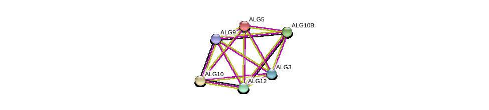http://string-db.org/version_10/api/image/networkList?limit=0&targetmode=proteins&caller_identity=gene_cards&network_flavor=evidence&identifiers=9606.ENSP00000333813%0d%0a9606.ENSP00000380793%0d%0a9606.ENSP00000239891%0d%0a9606.ENSP00000435517%0d%0a9606.ENSP00000310120%0d%0a9606.ENSP00000266483%0d%0a