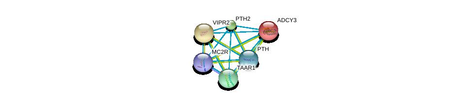http://string-db.org/version_10/api/image/networkList?limit=0&targetmode=proteins&caller_identity=gene_cards&network_flavor=evidence&identifiers=9606.ENSP00000333821%0d%0a9606.ENSP00000260600%0d%0a9606.ENSP00000262178%0d%0a9606.ENSP00000270631%0d%0a9606.ENSP00000275216%0d%0a9606.ENSP00000282091%0d%0a