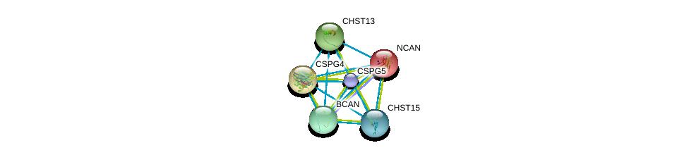 http://string-db.org/version_10/api/image/networkList?limit=0&targetmode=proteins&caller_identity=gene_cards&network_flavor=evidence&identifiers=9606.ENSP00000333947%0d%0a9606.ENSP00000252575%0d%0a9606.ENSP00000312506%0d%0a9606.ENSP00000331210%0d%0a9606.ENSP00000373244%0d%0a9606.ENSP00000317404%0d%0a