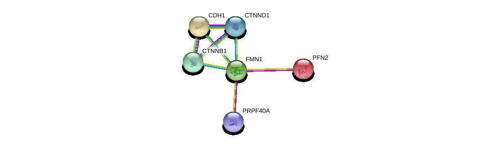http://string-db.org/version_10/api/image/networkList?limit=0&targetmode=proteins&caller_identity=gene_cards&network_flavor=evidence&identifiers=9606.ENSP00000333950%0d%0a9606.ENSP00000261769%0d%0a9606.ENSP00000382004%0d%0a9606.ENSP00000344456%0d%0a9606.ENSP00000386458%0d%0a9606.ENSP00000239940%0d%0a