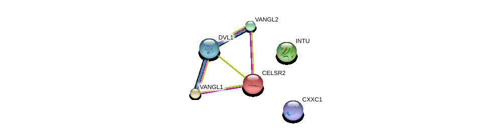 http://string-db.org/version_10/api/image/networkList?limit=0&targetmode=proteins&caller_identity=gene_cards&network_flavor=evidence&identifiers=9606.ENSP00000334003%0d%0a9606.ENSP00000390475%0d%0a9606.ENSP00000368169%0d%0a9606.ENSP00000357040%0d%0a9606.ENSP00000310800%0d%0a9606.ENSP00000271332%0d%0a