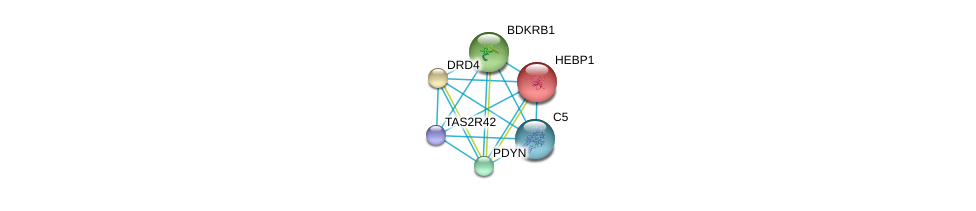 http://string-db.org/version_10/api/image/networkList?limit=0&targetmode=proteins&caller_identity=gene_cards&network_flavor=evidence&identifiers=9606.ENSP00000334050%0d%0a9606.ENSP00000014930%0d%0a9606.ENSP00000176183%0d%0a9606.ENSP00000216629%0d%0a9606.ENSP00000217305%0d%0a9606.ENSP00000223642%0d%0a