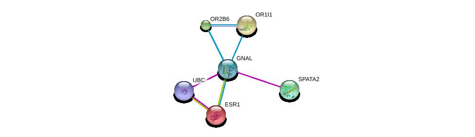 http://string-db.org/version_10/api/image/networkList?limit=0&targetmode=proteins&caller_identity=gene_cards&network_flavor=evidence&identifiers=9606.ENSP00000334051%0d%0a9606.ENSP00000289431%0d%0a9606.ENSP00000344818%0d%0a9606.ENSP00000206249%0d%0a9606.ENSP00000209540%0d%0a9606.ENSP00000244623%0d%0a