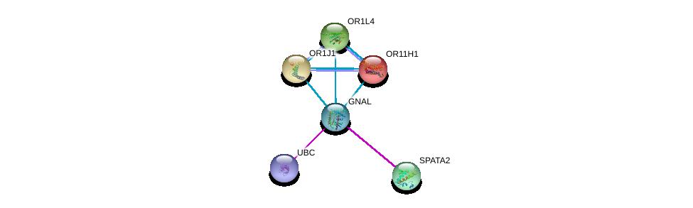 http://string-db.org/version_10/api/image/networkList?limit=0&targetmode=proteins&caller_identity=gene_cards&network_flavor=evidence&identifiers=9606.ENSP00000334051%0d%0a9606.ENSP00000289431%0d%0a9606.ENSP00000344818%0d%0a9606.ENSP00000252835%0d%0a9606.ENSP00000259357%0d%0a9606.ENSP00000259466%0d%0a