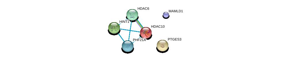 http://string-db.org/version_10/api/image/networkList?limit=0&targetmode=proteins&caller_identity=gene_cards&network_flavor=evidence&identifiers=9606.ENSP00000334061%0d%0a9606.ENSP00000262033%0d%0a9606.ENSP00000216271%0d%0a9606.ENSP00000398824%0d%0a9606.ENSP00000414517%0d%0a9606.ENSP00000304229%0d%0a