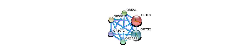 http://string-db.org/version_10/api/image/networkList?limit=0&targetmode=proteins&caller_identity=gene_cards&network_flavor=evidence&identifiers=9606.ENSP00000334115%0d%0a9606.ENSP00000302863%0d%0a9606.ENSP00000303076%0d%0a9606.ENSP00000303096%0d%0a9606.ENSP00000303111%0d%0a9606.ENSP00000303822%0d%0a