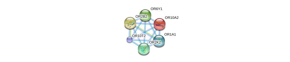 http://string-db.org/version_10/api/image/networkList?limit=0&targetmode=proteins&caller_identity=gene_cards&network_flavor=evidence&identifiers=9606.ENSP00000334115%0d%0a9606.ENSP00000304807%0d%0a9606.ENSP00000305055%0d%0a9606.ENSP00000305207%0d%0a9606.ENSP00000304419%0d%0a9606.ENSP00000303862%0d%0a