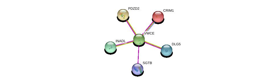 http://string-db.org/version_10/api/image/networkList?limit=0&targetmode=proteins&caller_identity=gene_cards&network_flavor=evidence&identifiers=9606.ENSP00000334186%0d%0a9606.ENSP00000360200%0d%0a9606.ENSP00000361467%0d%0a9606.ENSP00000282493%0d%0a9606.ENSP00000370395%0d%0a9606.ENSP00000280527%0d%0a