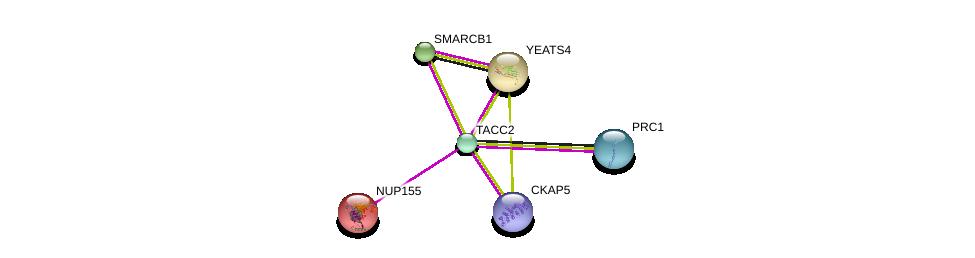 http://string-db.org/version_10/api/image/networkList?limit=0&targetmode=proteins&caller_identity=gene_cards&network_flavor=evidence&identifiers=9606.ENSP00000334280%0d%0a9606.ENSP00000432768%0d%0a9606.ENSP00000231498%0d%0a9606.ENSP00000377793%0d%0a9606.ENSP00000247843%0d%0a9606.ENSP00000263121%0d%0a