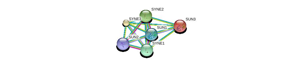http://string-db.org/version_10/api/image/networkList?limit=0&targetmode=proteins&caller_identity=gene_cards&network_flavor=evidence&identifiers=9606.ENSP00000334308%0d%0a9606.ENSP00000384015%0d%0a9606.ENSP00000350719%0d%0a9606.ENSP00000356224%0d%0a9606.ENSP00000385616%0d%0a9606.ENSP00000297325%0d%0a