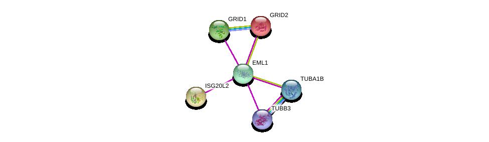 http://string-db.org/version_10/api/image/networkList?limit=0&targetmode=proteins&caller_identity=gene_cards&network_flavor=evidence&identifiers=9606.ENSP00000334314%0d%0a9606.ENSP00000323424%0d%0a9606.ENSP00000282020%0d%0a9606.ENSP00000330148%0d%0a9606.ENSP00000336799%0d%0a9606.ENSP00000451560%0d%0a