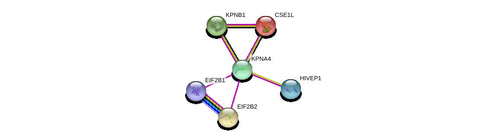 http://string-db.org/version_10/api/image/networkList?limit=0&targetmode=proteins&caller_identity=gene_cards&network_flavor=evidence&identifiers=9606.ENSP00000334373%0d%0a9606.ENSP00000266126%0d%0a9606.ENSP00000416250%0d%0a9606.ENSP00000368698%0d%0a9606.ENSP00000290158%0d%0a9606.ENSP00000262982%0d%0a