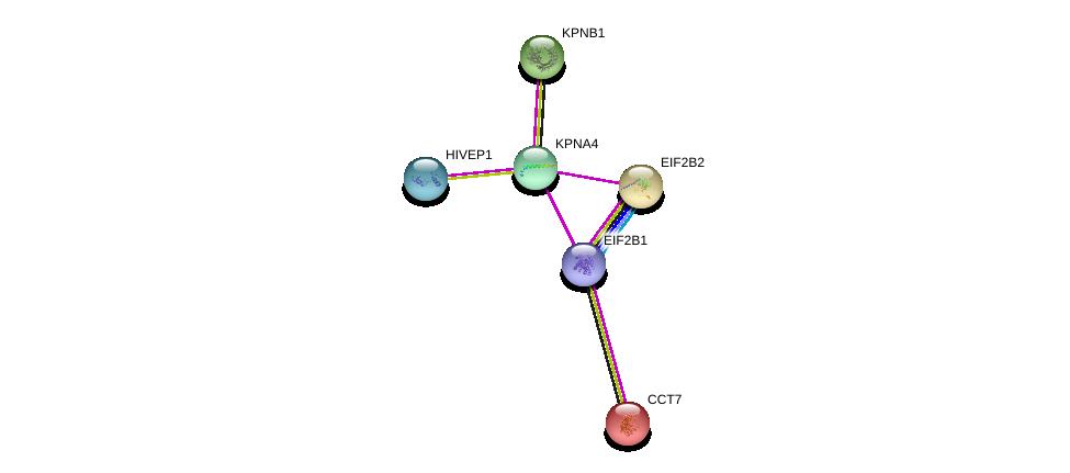 http://string-db.org/version_10/api/image/networkList?limit=0&targetmode=proteins&caller_identity=gene_cards&network_flavor=evidence&identifiers=9606.ENSP00000334373%0d%0a9606.ENSP00000368698%0d%0a9606.ENSP00000290158%0d%0a9606.ENSP00000416250%0d%0a9606.ENSP00000266126%0d%0a9606.ENSP00000258091%0d%0a
