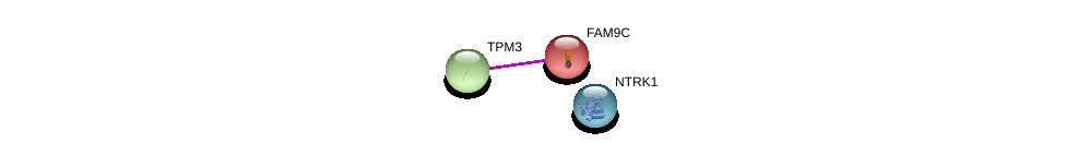 http://string-db.org/version_10/api/image/networkList?limit=0&targetmode=proteins&caller_identity=gene_cards&network_flavor=evidence&identifiers=9606.ENSP00000334430%0d%0a9606.ENSP00000357516%0d%0a9606.ENSP00000431418%0d%0a