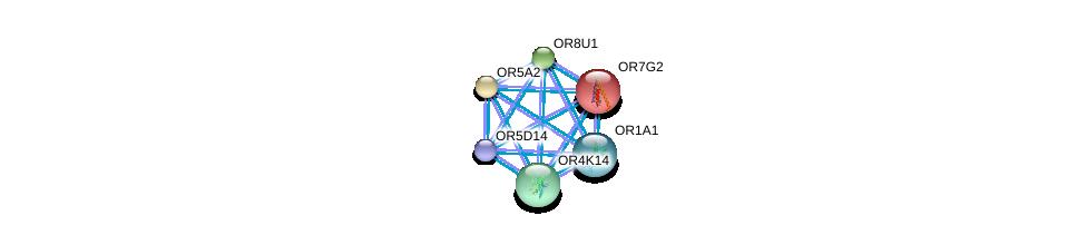 http://string-db.org/version_10/api/image/networkList?limit=0&targetmode=proteins&caller_identity=gene_cards&network_flavor=evidence&identifiers=9606.ENSP00000334456%0d%0a9606.ENSP00000305011%0d%0a9606.ENSP00000304188%0d%0a9606.ENSP00000305207%0d%0a9606.ENSP00000303834%0d%0a9606.ENSP00000303822%0d%0a