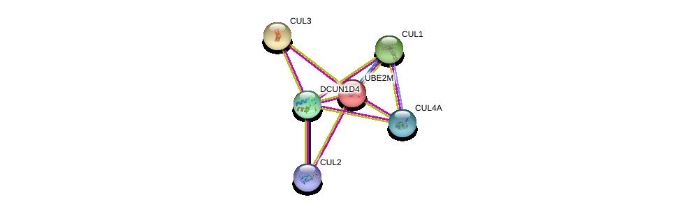 http://string-db.org/version_10/api/image/networkList?limit=0&targetmode=proteins&caller_identity=gene_cards&network_flavor=evidence&identifiers=9606.ENSP00000334625%0d%0a9606.ENSP00000253023%0d%0a9606.ENSP00000326804%0d%0a9606.ENSP00000264414%0d%0a9606.ENSP00000364589%0d%0a9606.ENSP00000444856%0d%0a