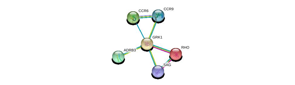 http://string-db.org/version_10/api/image/networkList?limit=0&targetmode=proteins&caller_identity=gene_cards&network_flavor=evidence&identifiers=9606.ENSP00000334876%0d%0a9606.ENSP00000386444%0d%0a9606.ENSP00000296271%0d%0a9606.ENSP00000339393%0d%0a9606.ENSP00000343782%0d%0a9606.ENSP00000350256%0d%0a