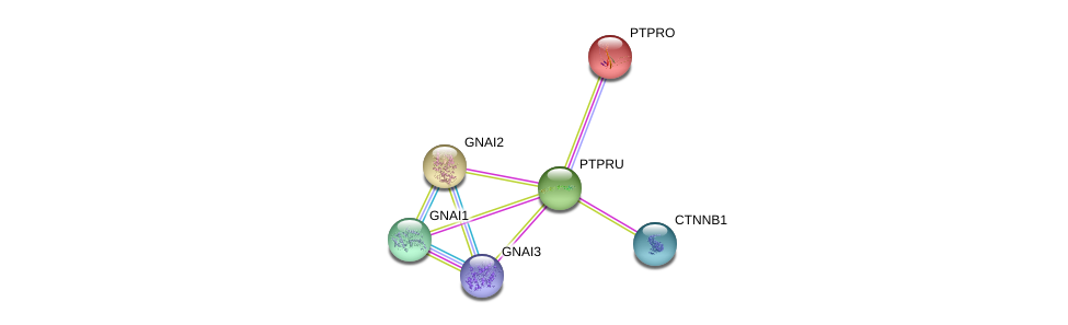 http://string-db.org/version_10/api/image/networkList?limit=0&targetmode=proteins&caller_identity=gene_cards&network_flavor=evidence&identifiers=9606.ENSP00000334941%0d%0a9606.ENSP00000344456%0d%0a9606.ENSP00000281171%0d%0a9606.ENSP00000312999%0d%0a9606.ENSP00000343027%0d%0a9606.ENSP00000358867%0d%0a