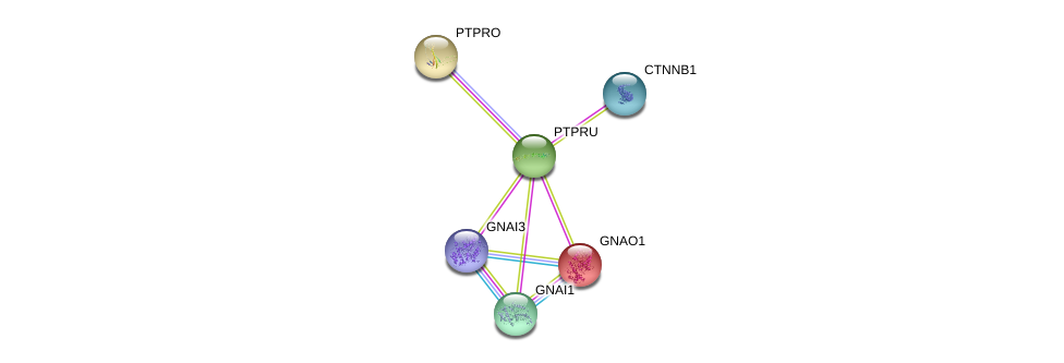 http://string-db.org/version_10/api/image/networkList?limit=0&targetmode=proteins&caller_identity=gene_cards&network_flavor=evidence&identifiers=9606.ENSP00000334941%0d%0a9606.ENSP00000344456%0d%0a9606.ENSP00000281171%0d%0a9606.ENSP00000343027%0d%0a9606.ENSP00000358867%0d%0a9606.ENSP00000262493%0d%0a