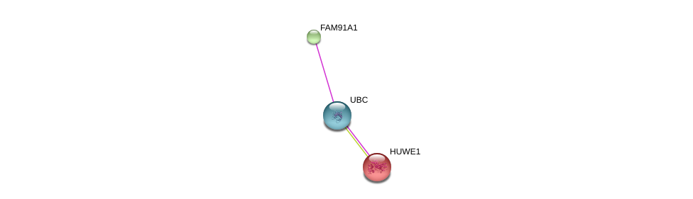 http://string-db.org/version_10/api/image/networkList?limit=0&targetmode=proteins&caller_identity=gene_cards&network_flavor=evidence&identifiers=9606.ENSP00000335082%0d%0a9606.ENSP00000344818%0d%0a9606.ENSP00000262854%0d%0a