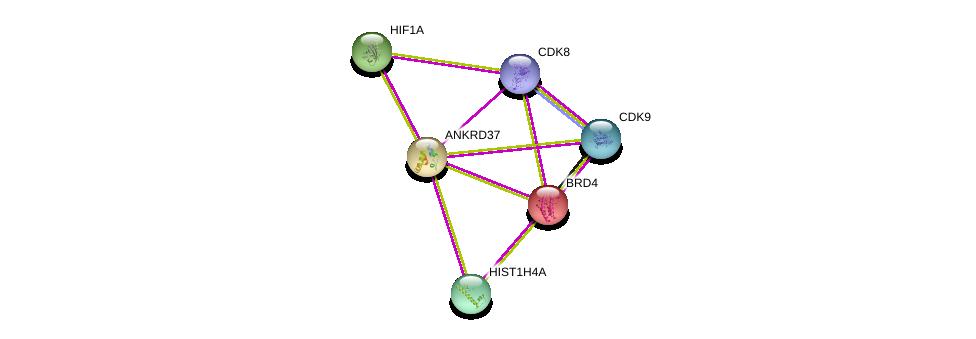 http://string-db.org/version_10/api/image/networkList?limit=0&targetmode=proteins&caller_identity=gene_cards&network_flavor=evidence&identifiers=9606.ENSP00000335147%0d%0a9606.ENSP00000370938%0d%0a9606.ENSP00000352980%0d%0a9606.ENSP00000362361%0d%0a9606.ENSP00000338018%0d%0a9606.ENSP00000263377%0d%0a