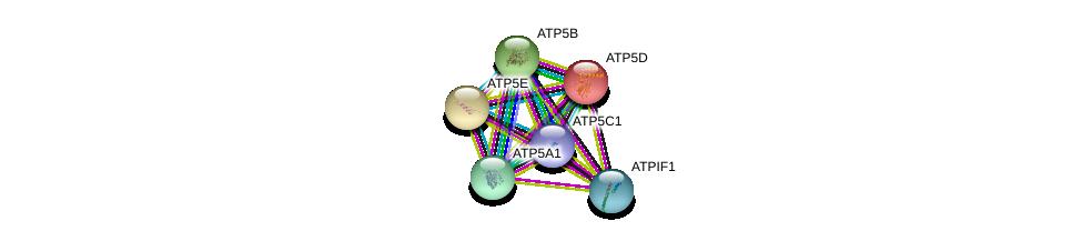 http://string-db.org/version_10/api/image/networkList?limit=0&targetmode=proteins&caller_identity=gene_cards&network_flavor=evidence&identifiers=9606.ENSP00000335203%0d%0a9606.ENSP00000215375%0d%0a9606.ENSP00000262030%0d%0a9606.ENSP00000282050%0d%0a9606.ENSP00000349142%0d%0a9606.ENSP00000243997%0d%0a