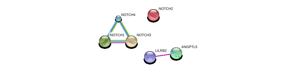 http://string-db.org/version_10/api/image/networkList?limit=0&targetmode=proteins&caller_identity=gene_cards&network_flavor=evidence&identifiers=9606.ENSP00000335255%0d%0a9606.ENSP00000375629%0d%0a9606.ENSP00000256646%0d%0a9606.ENSP00000263388%0d%0a9606.ENSP00000277541%0d%0a9606.ENSP00000364163%0d%0a