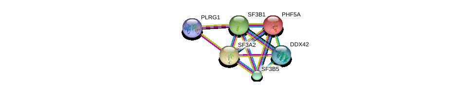 http://string-db.org/version_10/api/image/networkList?limit=0&targetmode=proteins&caller_identity=gene_cards&network_flavor=evidence&identifiers=9606.ENSP00000335321%0d%0a9606.ENSP00000356541%0d%0a9606.ENSP00000374574%0d%0a9606.ENSP00000424417%0d%0a9606.ENSP00000216252%0d%0a9606.ENSP00000221494%0d%0a