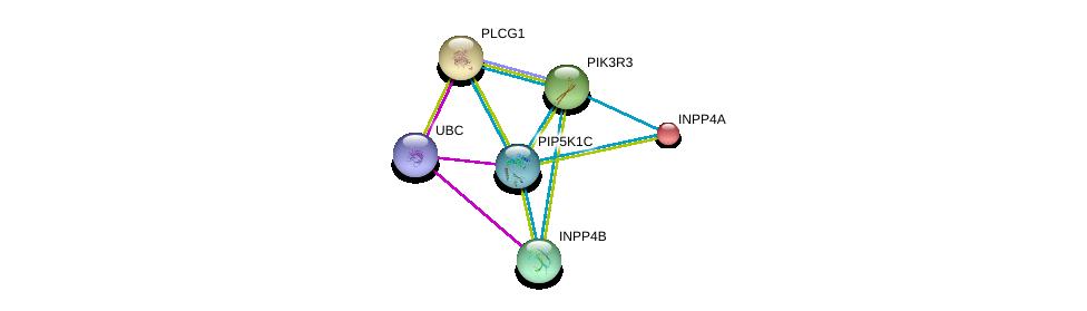 http://string-db.org/version_10/api/image/networkList?limit=0&targetmode=proteins&caller_identity=gene_cards&network_flavor=evidence&identifiers=9606.ENSP00000335333%0d%0a9606.ENSP00000344818%0d%0a9606.ENSP00000074304%0d%0a9606.ENSP00000244007%0d%0a9606.ENSP00000262741%0d%0a9606.ENSP00000262992%0d%0a
