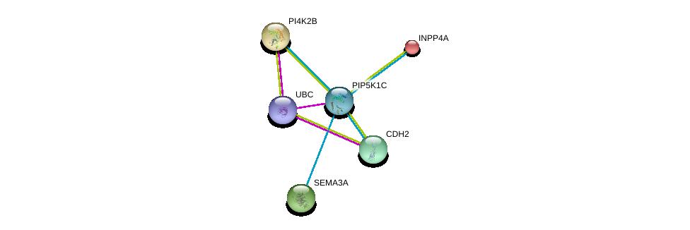 http://string-db.org/version_10/api/image/networkList?limit=0&targetmode=proteins&caller_identity=gene_cards&network_flavor=evidence&identifiers=9606.ENSP00000335333%0d%0a9606.ENSP00000344818%0d%0a9606.ENSP00000074304%0d%0a9606.ENSP00000264864%0d%0a9606.ENSP00000265362%0d%0a9606.ENSP00000269141%0d%0a