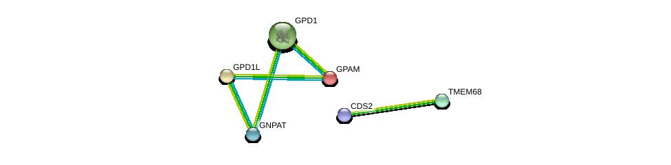 http://string-db.org/version_10/api/image/networkList?limit=0&targetmode=proteins&caller_identity=gene_cards&network_flavor=evidence&identifiers=9606.ENSP00000335416%0d%0a9606.ENSP00000265276%0d%0a9606.ENSP00000355607%0d%0a9606.ENSP00000301149%0d%0a9606.ENSP00000282541%0d%0a9606.ENSP00000419879%0d%0a