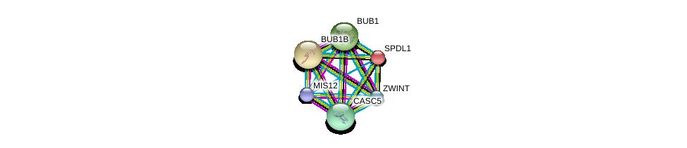 http://string-db.org/version_10/api/image/networkList?limit=0&targetmode=proteins&caller_identity=gene_cards&network_flavor=evidence&identifiers=9606.ENSP00000335463%0d%0a9606.ENSP00000370557%0d%0a9606.ENSP00000302530%0d%0a9606.ENSP00000363055%0d%0a9606.ENSP00000287598%0d%0a9606.ENSP00000265295%0d%0a