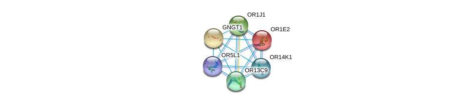 http://string-db.org/version_10/api/image/networkList?limit=0&targetmode=proteins&caller_identity=gene_cards&network_flavor=evidence&identifiers=9606.ENSP00000335529%0d%0a9606.ENSP00000248384%0d%0a9606.ENSP00000248572%0d%0a9606.ENSP00000259357%0d%0a9606.ENSP00000259362%0d%0a9606.ENSP00000283225%0d%0a