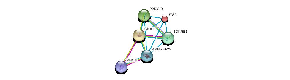 http://string-db.org/version_10/api/image/networkList?limit=0&targetmode=proteins&caller_identity=gene_cards&network_flavor=evidence&identifiers=9606.ENSP00000335560%0d%0a9606.ENSP00000400175%0d%0a9606.ENSP00000054668%0d%0a9606.ENSP00000078429%0d%0a9606.ENSP00000171757%0d%0a9606.ENSP00000216629%0d%0a